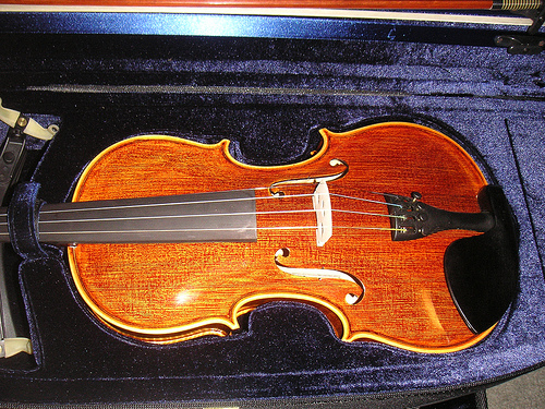 Violin Care New Violin